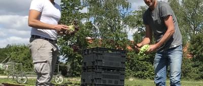 Onze Boeren: Ivo van Eck en Cindy Vermeulen van Klispoel